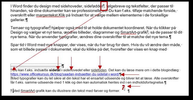 Fodnoter oprettet i et Word dokument