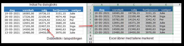 Har du indsat elementet med dialogboksen kan du dobbeltklikke på elementet og åbne det i Excel